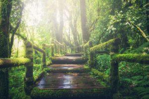 adventure-1807476_960_720
